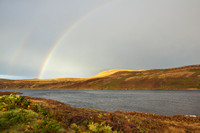 Double Rainbow II
