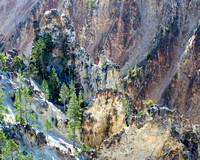 Yellowstone Grand Canyon-6777